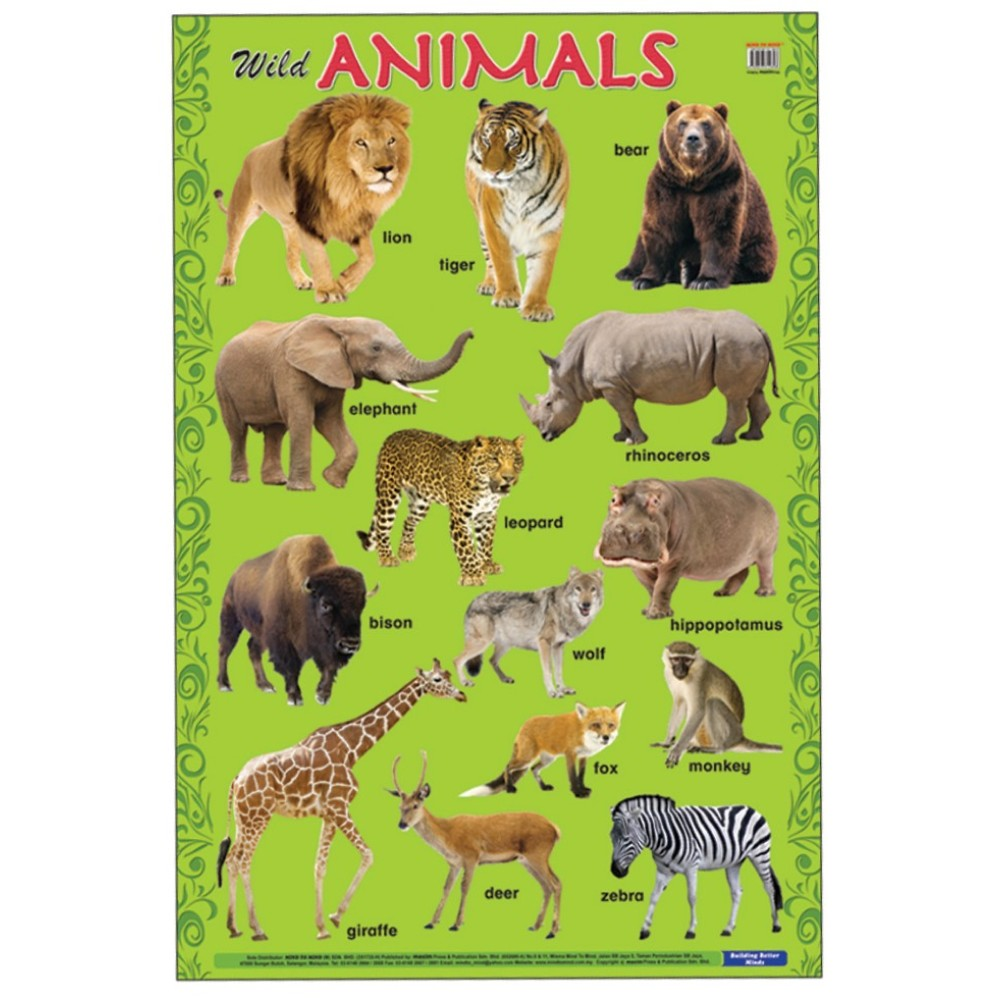 Educational Chart Wild Animals (MM14898)